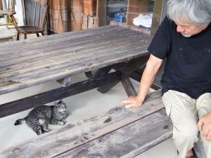 げた箱で お迎えします at 青風窯 カフェギャラリー 土花土花(恩納村)